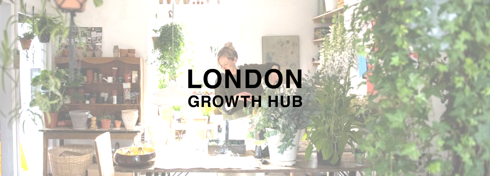 London Growth Hub business support